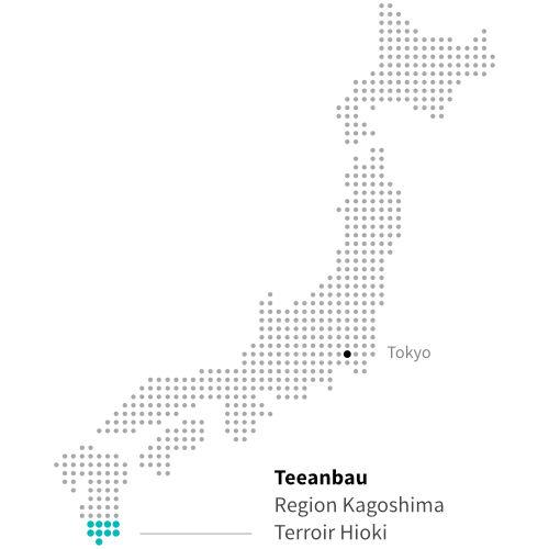 Japanischer Teeanbau in Hioki, Kagoshima ITCHOO Grüntee