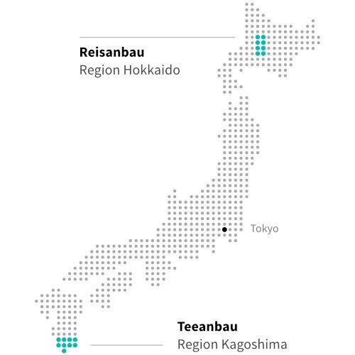 Japanischer Teeanbau in Kagoshima und Reisanbau in Hokkaido ITCHOO Grüntee