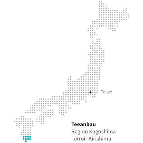 Japanischer Teeanbau in Kagoshima ITCHOO Grüntee