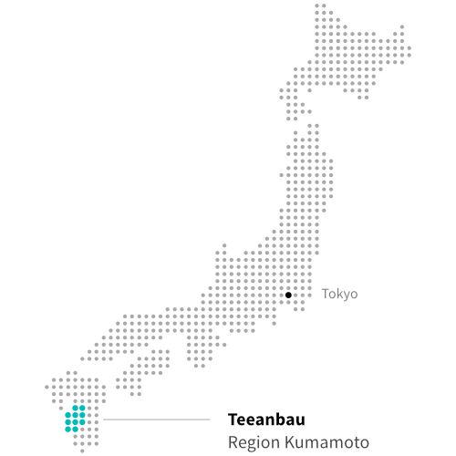 Japanischer Teeanbau in Kumamoto ITCHOO Grüntee