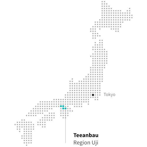 Japanischer Teeanbau in Uji